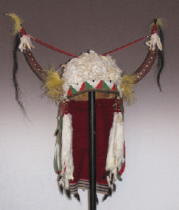 Split buffalo horns indian headdress with ermine fur