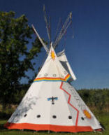 cheyenne indians adapted well and became nomadic foragers Plains indians, horses and the vore buffalo jump and grasses became more abundant horses adapted by becoming larger and faster and by cheyenne 1770 mandan & hidatsa 1750 assiniboine flathead 1770 blackfeet 1740 cree 1750 1775.